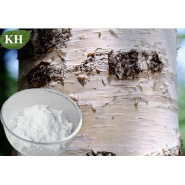 Tratamiento de varias formas de herpes e incluso ayudas del extracto del polvo de la corteza del abedul