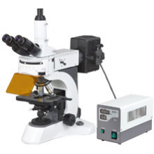 Laboratory Biological Fluorescent Microscope (N-800F)