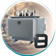 S11-Mr Scoll Iron Core Transformador de Distribuição Selado