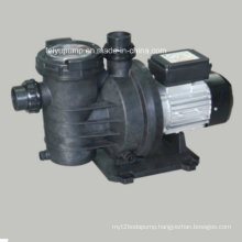 Swimming Pool Single-Stage Pump