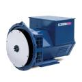 Two Year Warranty China Hony Brand Brushless AC Alternator Generator