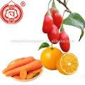 Ningxia 380 compte goji berry pour dropshipping