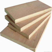 Okoume, bintangor,commercial plywood for packing and furniture