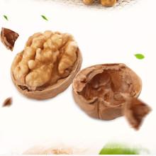 High Quality Walnut Kernel LH LAH