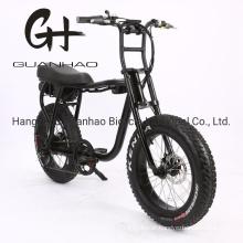 20inch En15194/CE OEM/ODM Samsung 17ah Battery New Ebike with Motor 48V 1000W Fat Tire Super 73 Electric Bike