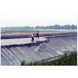 Eco Friendly Pp Agriculture Nonwoven Fabric For Vegetables