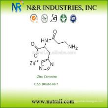 Zinc Carnosine CAS:107667-60-7
