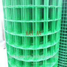 48''X100 'geschweißte Drahtgeflecht / Elektroschweißen Netz / geschweißte Drahtgeflecht Panel ---- 30 Jahre Fabrik