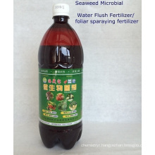 Seaweed bio Microbial foliar organic fertilizer