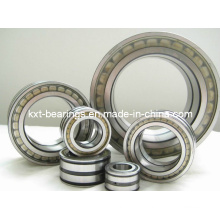 SL181884 Full Complement Roller Bearing