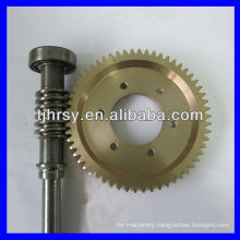 Worm gear and shaft