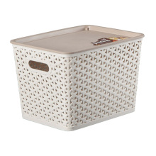 Creative Weave Design Plastic Storage Box for Storage (SLSN065)
