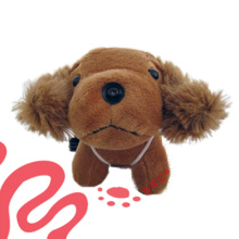 Plush Dog and Plush Camera Toy