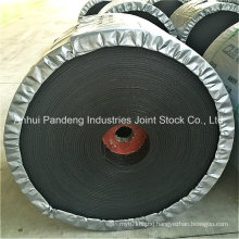 Conveyor Belt/Nylon Conveyor Belt with Fire Resistance/Conveyor Belt Manufacturer
