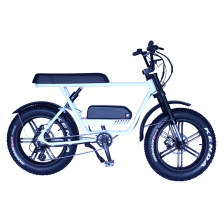 EEC & COC Certificate 11.6Ah lithium battery Electric mountain bicycle