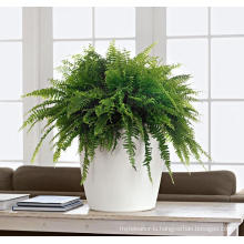 (BC-F1042) Fashionable Design Plastic Self-Watering Flower Pot