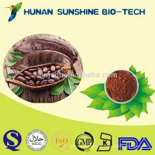 Pó de cacau natural material do pó da planta do chocolate / pó de cacau