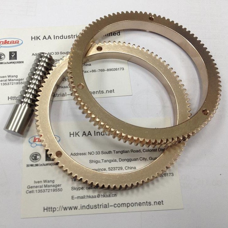 Brass Ring Gear Worm Shaft for Racing Car