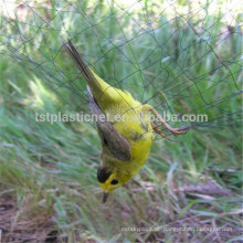 Vögel Netting zu verkaufen