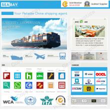 Transporte inteiro da venda da China