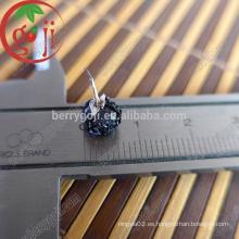 Al por mayor de China Goji secado negro goji importación precio goji negro
