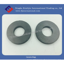 Ferrite Magnets/Ceramic Rings (XLJ-1110)