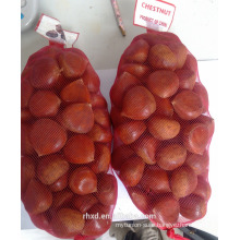 snack foods fresh peeled chestnuts for sale/frozen roasted chestnuts in gunny bags