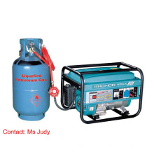 Fase monofásica 3kw do gerador da gasolina de Bn3000-LPG AVR