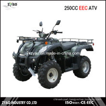250cc EEC Jianshe ATV with Winch, Farm ATV Big Engine 250cc Water Cooled EEC Approved, EEC Quad 250cc Super Quality