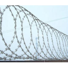 Safety Razor Barbed wire Cheap hot dipped galvanized wire