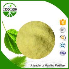 100% Fertilizante Solúvel em Água 19-9-19 NPK