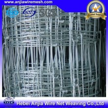 Galvanized Knotted Wire Mesh Fence for Stock Farming