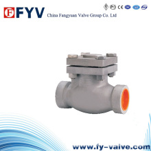 Cryogenic Stainless Steel Swing Check Valve