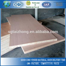 44mm Natural Beech Flush Door