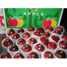 Chinês, vermelho, maçã, huaniu, maçã