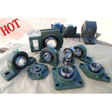 Pillow Block, Ucp Ucf Uc Pillow Block Bearing Type and Fkd Brand Name Pillow Block Bearing P207