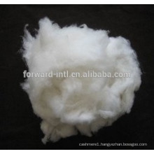 Favorite Quality Good Price Cashmere Fiber Factory Supplier
