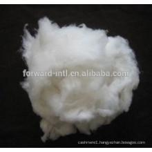 Favorite Quality Good Price Cashmere Fiber Factory Supplier
