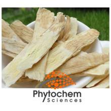 Natural pure astragalus membranaceus 10% Polysaccharides