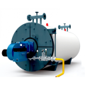 WNS Gas Fired Condensing Steam Boiler