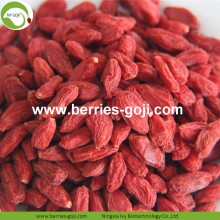New Harvest Super Food Baies de Goji crues séchées