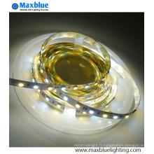 Dual White CCT réglable SMD2835 LED Strip Light