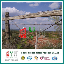 Cattle Encloure Barbed Wire Fence