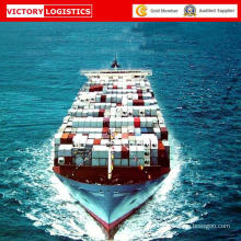 Logistics Service LCL From China to Mardras/Chennai