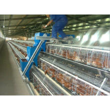 Automatic H Type Broiler Layer Cage