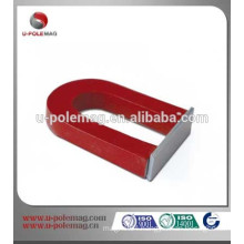 Educational alnico magnet