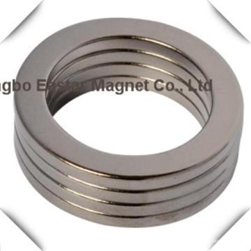 Großer Ring-Neodym-Magneten verwendet für Autolautsprecher