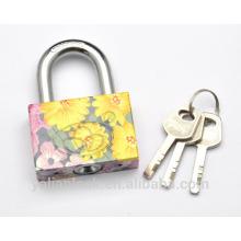 Flor de chegada nova pintado galvanoplastia pequeno quadrado bonito vane chave padrão impressão ferro cadeado