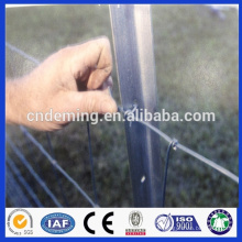 Good Quality Hot dipped galvanized 1.8m Steel Y Posts