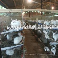 jaulas de conejos baratos / jaula de conejo con equipo de granja de bebedor automático